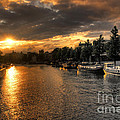 Sunset Over Amsterdam  by Rob Hawkins