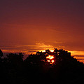 Sunset Over Sutton Surrey by Lance Sheridan-Peel