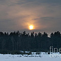 Sunset Over  The Forest by Cheryl Baxter