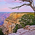 Sunset Over The Grand Canyon From South Rim Trail In Grand Canyon National Park-arizona   by Ruth Hager