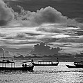 Sunset Over The Gulf Of Thailand Black And White by David Freuthal