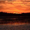 Sunset Over Tiny Marsh by David Porteus