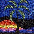 Sunset Palm by Doug Powell