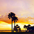 Sunset Panorama by Francesa Miller