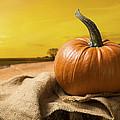 Sunset Pumpkin by Amanda Elwell