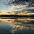 Sunset Reflection by Yulia Kazansky