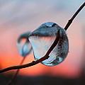 Sunset River Tears by David  Jones