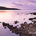 Sunset Rocks by Tim Hester