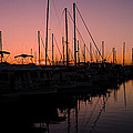 Sunset Sail by Michael James