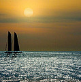 Sunset Sailing by Doug Oriard