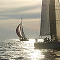 Sunset Sailing by Felixco