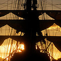 Sunset Sails by David Lee Thompson