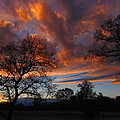 Sunset September 24 2013 by Joyce Dickens