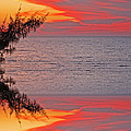 Sunset Seranade by Aimee L Maher ALM GALLERY