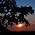 Sunset Silhouette by Regina  Williams