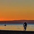 Sunset Silhouettes by Tylie Duff