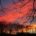 Sunset Spectacular by Kathryn Meyer
