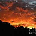 Sunset Splendor by Bob Christopher