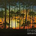 Sunset Over St. Joseph's Peninsula by Lora Duguay