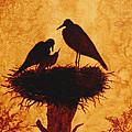 Sunset Stork Family Silhouettes by Georgeta  Blanaru