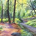 Sunset Stroll  by Carol Wisniewski
