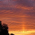 Sunset Sunburst by Zina Stromberg