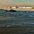 Sunset Surfer by Mark Lemmon