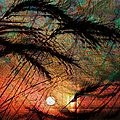 Sunset Through The Grass by Kiki Art