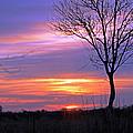 Sunset by Tony Murtagh