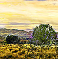 Sunset Verde Valley Thousand Trails by Bob and Nadine Johnston