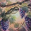 Sunset Vineyard by Conni  Reinecke