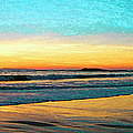 Sunset With Birds by Ben and Raisa Gertsberg