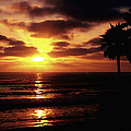 Sunset With Friends by Sharon Tate Soberon