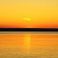 Sunsets Desire by Rachel Cohen