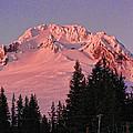 Sunsetting On Mount Hood Oregon 1 by Helaine Cummins