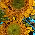 Sunshine And Turquoise  by Phyllis Denton
