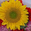 Sunshine Bouquet by Arlene Carmel
