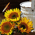 Sunshine From The Garden by Phyllis Denton