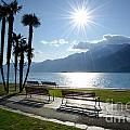 Sunshine Over A Lake Front by Mats Silvan