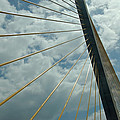 Sunshine Skyway by Aimee L Maher ALM GALLERY