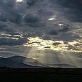 Sunshines by Sotiris Filippou