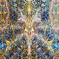 Sunshine's Transcendence by D Walton