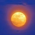 Super Moon  by Cynthia Guinn