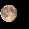 Super Moon by David Millenheft