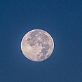 Super Moon July 2014  by Renny Spencer