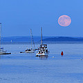 Super Moon Rising In Maine by Barbara West