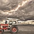 Superman Sepia Skies by James BO  Insogna