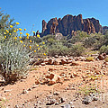 Superstition Mountains by Heather Coen