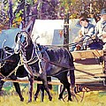 Supply Wagon by Ron Lace