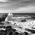 Surf At Cambria by Barbara Snyder